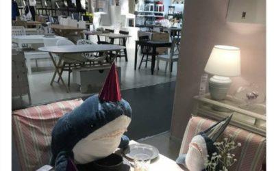 IKEA Sharks